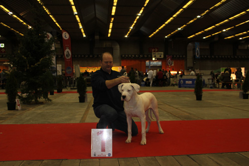 Kapaco-Show_Brussel_december_2011_0221