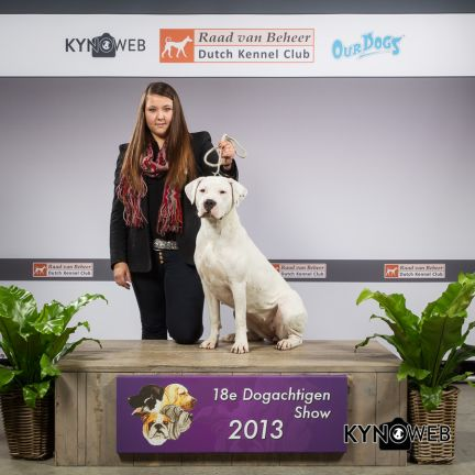 Milla_Del_Grande_Casador_Branco_best_of_breed_Den-Bosch_2013_21